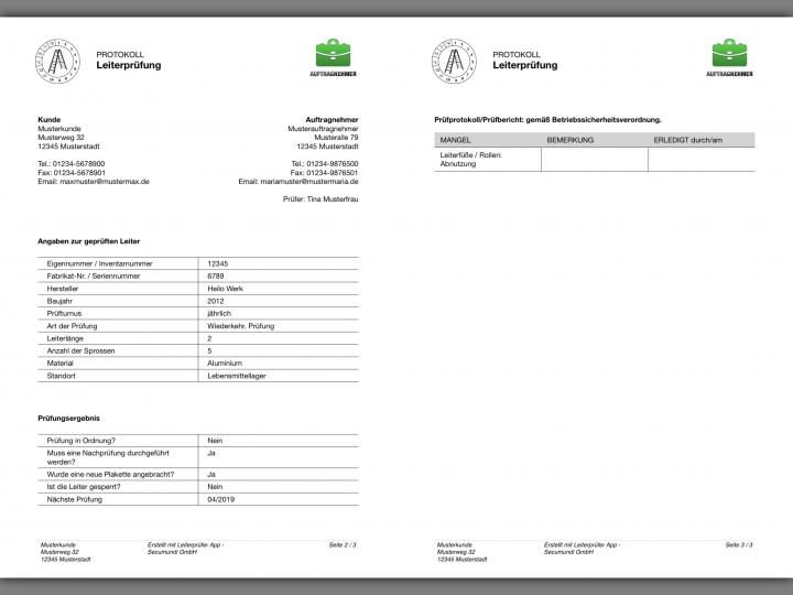 Auzug auf einem Prüfbericht für die Prüfung von Leitern bzw. Leiterprotokoll